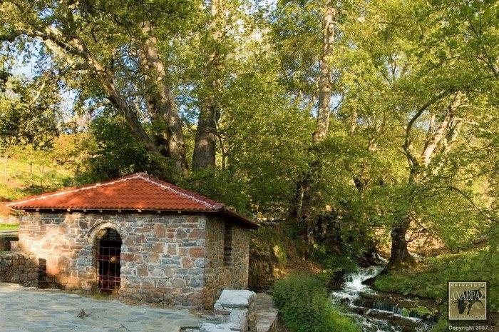 Στο πιο πλούσιο χωριό της Ελλάδας δεν υπάρχει κρίση και ανεργία. Δείτε γιατί οι 700 κάτοικοι του χωριού ζουν σαν... κροίσοι [photos] - Φωτογραφία 11