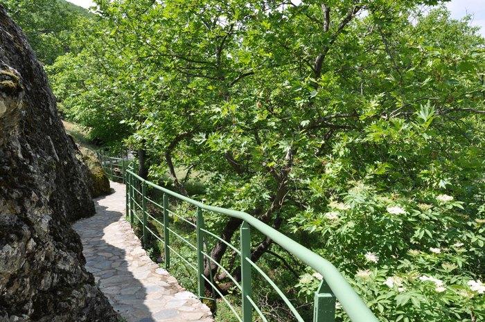 Στο πιο πλούσιο χωριό της Ελλάδας δεν υπάρχει κρίση και ανεργία. Δείτε γιατί οι 700 κάτοικοι του χωριού ζουν σαν... κροίσοι [photos] - Φωτογραφία 13