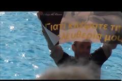 Πρόστιμο 44.350 ευρώ στο Αττικό Πάρκο για παραστάσεις δελφινιών