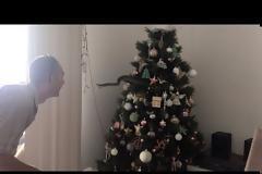 Απίστευτο! Το χριστουγεννιάτικο δέντρο τους κουνιόταν και έβγαζε ήχους! Τι συνέβη;