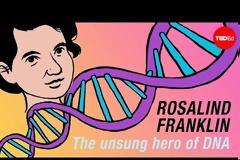 Rosalind Franklin : Η αφανής ηρωίδα του DNA