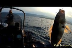Νέο βίντεο - Ψαρεμα στην Μηλινα