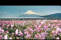 Το νέο τρένο-σφαίρα της Ιαπωνίας μπορεί να τρέχει ακόμη και όταν τα πάντα γύρω του καταρρέουν
