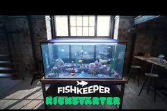 Fishkeeper: Στήστε το ενυδρείο που θέλετε σε έναν ρεαλιστικό προσομοιωτή ζωής ψαριών ενυδρείου