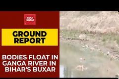 Δραματικές στιγμές στην Ινδία: Οι σοροί δεκάδων θυμάτων κορονοϊού ξεβράστηκαν στις όχθες του Γάγγη (βίντεο)