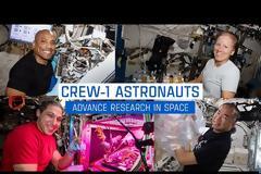 Η έρευνα των αστροναυτών στον Διεθνή Διαστημικό Σταθμό ISS