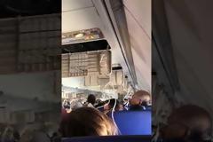 Στιγμές τρόμου σε Πτήση - Φρικιαστικός θάνατος για 43χρονη, τη «ρούφηξε» το σπασμένο παράθυρο [video]
